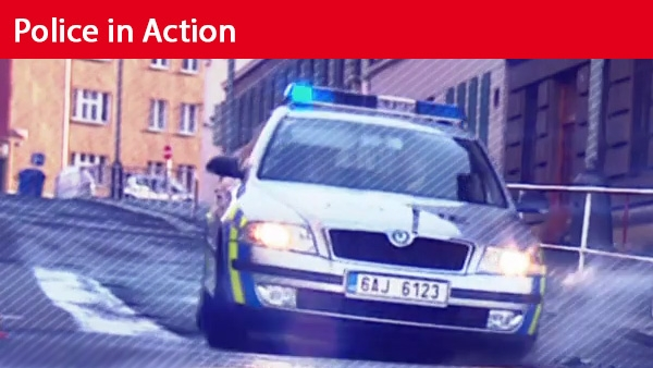 Police in Action